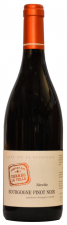 Récolte Bourgogne Pinot Noir