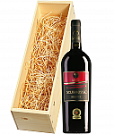 Wijnkist met Cantine Due Palme Salice Salentino Selvarossa 2012