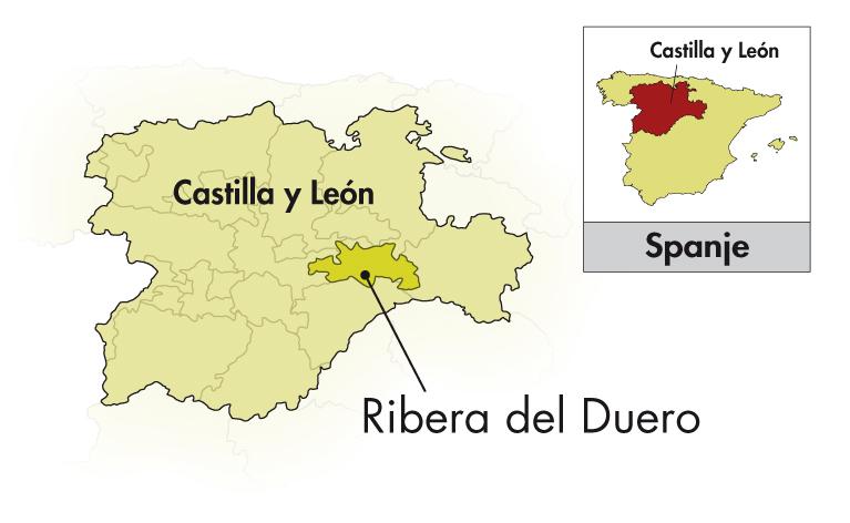 Bodegas Antídoto Ribera del Duero
