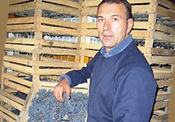 Recioto, Amarone en Ripasso