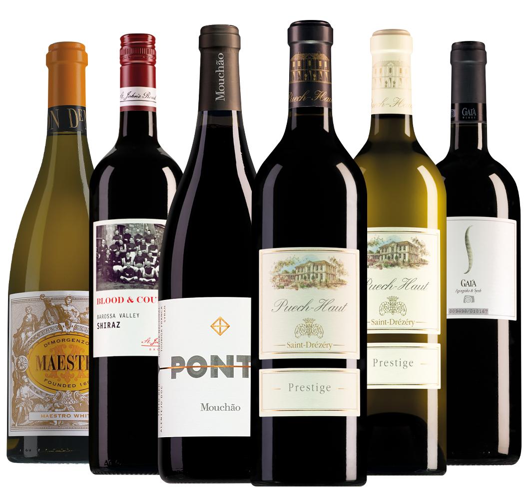 Wijnpakket Master of Wine selectie (6 flessen)