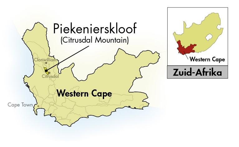 Nieuwe Trek Western-Cape Eerste Oes Sauvignon Blanc