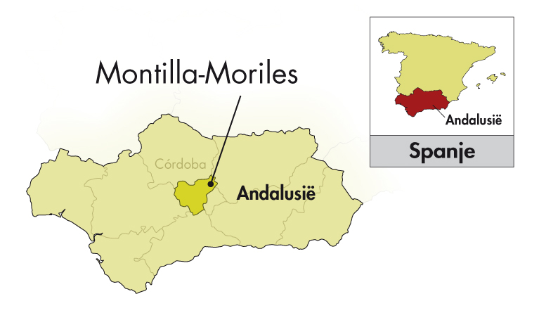 Alvear Montilla-Moriles Pedro Ximénez Solera halve fles