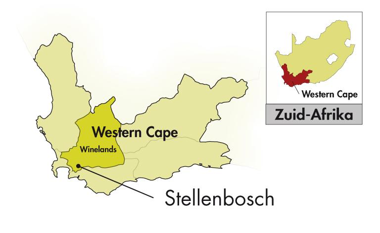 DeMorgenzon Stellenbosch DMZ Sauvignon Blanc
