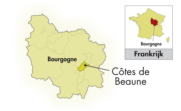 Domaine Vincent Bouzereau Volnay