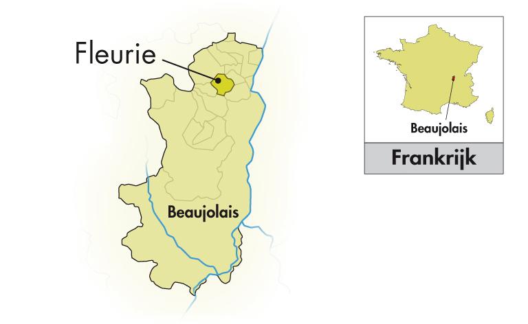 Domaine de Roche-Guillon Beaujolais Villages 2018