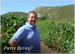 Pierre Bories